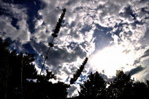 cloud_image_1